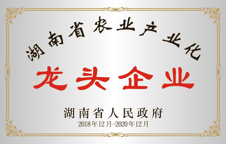 <span>湖南省农业产业化农头企业</span>